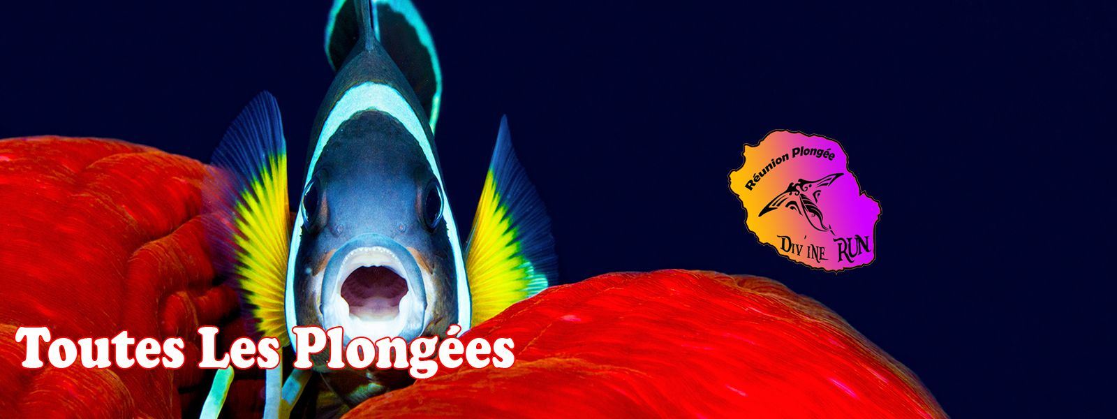 Réunion Plongée Poisson Clown Petit Logo